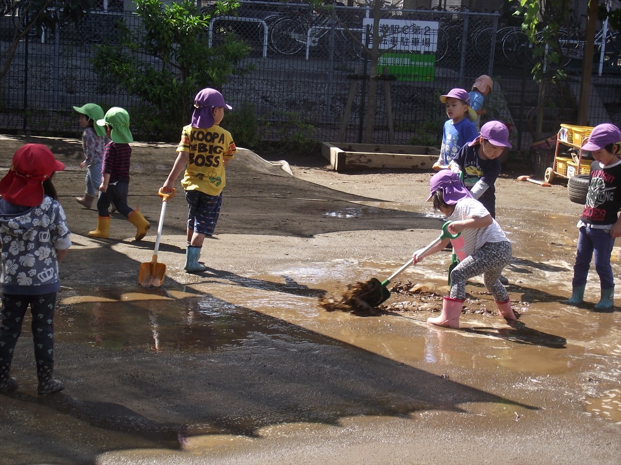 昨日降った雨でできた水たまり・・園庭に出た幼児、ぶどう組を中心にスコップで水たまりの水を散らす作業をしてくれました。